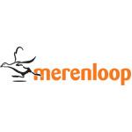 Nico van Ginkel, Merenloop